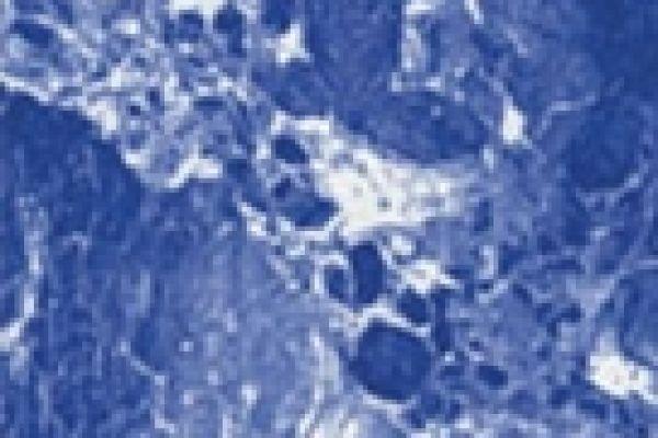 pattern-marbleAB81666A-0B40-57EB-235F-CF05CB5BF8EF.jpg